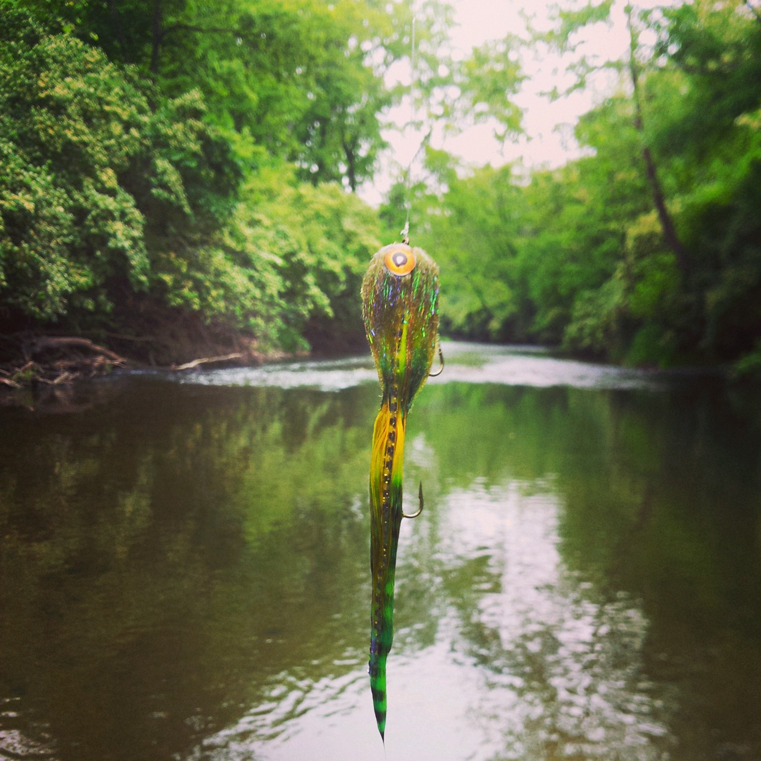 Never ask a river about the fish it keeps for Fly fishing indiana